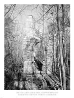 McCulloch Gold Mill, Copper Branch Guilford County, North Carolina Fine-Art Print