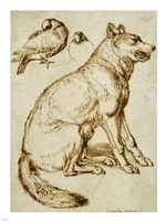 A Wolf and Two Doves Fine-Art Print