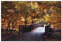 Autumn Overpass Fine-Art Print