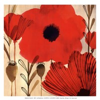 Wild Poppies I - Mini Fine-Art Print