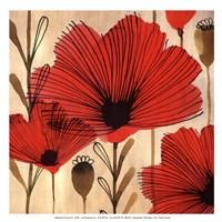 Wild Poppies II - Mini Fine-Art Print