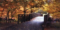 Autumn Overpass-Special Fine-Art Print