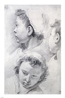 Three Studies of the Head of a Youth Fine-Art Print