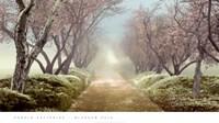 Blossom Path Fine-Art Print