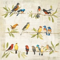 Adoration of the Magpie Music Fine-Art Print