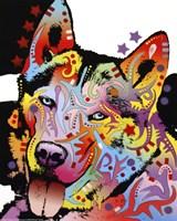 Siberian Husky 1 Fine-Art Print