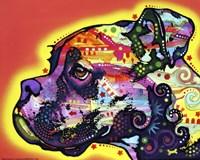 Profile Boxer 1 Fine-Art Print