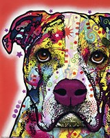 American Bulldog 2 Fine-Art Print