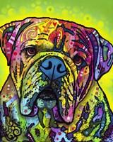 Hey Bulldog Fine-Art Print