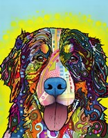 Bernese Mountain Dog Fine-Art Print