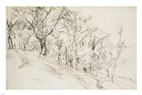 Forest in Boisremond Fine-Art Print