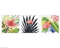 Tropical Fine-Art Print