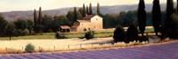 Lavender Fields Panel II Fine-Art Print