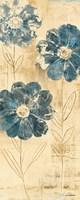 Daisy Trio II Fine-Art Print