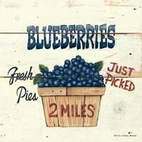 Blueberries Just Picked Fine-Art Print