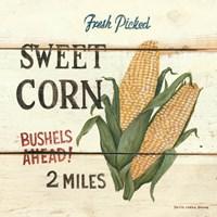 Fresh Picked Sweet Corn Fine-Art Print