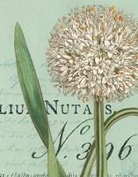 Botanique Bleu II Fine-Art Print