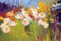 Contemporary Meadow Fine-Art Print