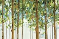 Forest Study I Crop Fine-Art Print
