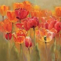 Tulips in the Midst III Crop Fine-Art Print