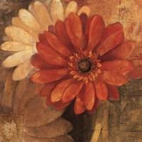 Bold Gerberas III Fine-Art Print