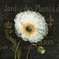 Botanical Garden I Fine-Art Print