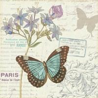 Papillon Tales II Fine-Art Print