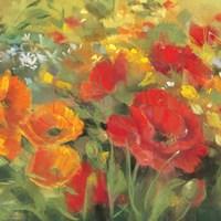 Oriental Poppy Field I Fine-Art Print