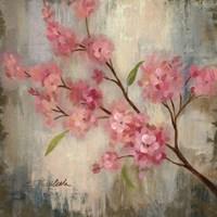 Cherry Blossom II Fine-Art Print