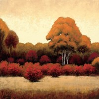 Autumn Forest I Fine-Art Print