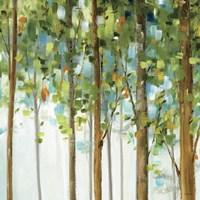 Forest Study III Fine-Art Print