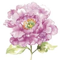 Water Flower I Fine-Art Print