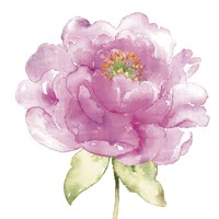 Water Flower II Fine-Art Print