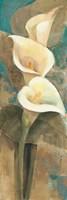 Calla Lily Trio Panel Fine-Art Print