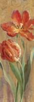 Parrot Tulips on Gold II Fine-Art Print