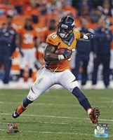 Demaryius Thomas 2013 catching the ball Fine-Art Print