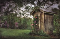 Fragrant Outhouse Fine-Art Print