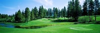 Golf course, Edgewood Tahoe Golf Course, Stateline, Douglas County, Nevada, USA Fine-Art Print