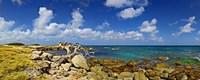Rocks at the coast, Aruba Fine-Art Print