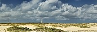 Clouds over the beach with California Lighthouse in the background, Aruba Fine-Art Print