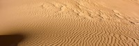 Great Sand Dunes National Park, Colorado, USA (close-up) Fine-Art Print