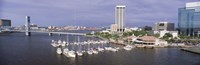 USA, Florida, Jacksonville, St. Johns River, High angle view of Marina Riverwalk Fine-Art Print