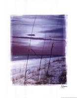 Dawn Fine-Art Print