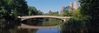 Bridge across a lake, Central Park, New York City, New York State, USA Fine-Art Print