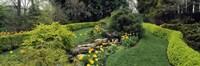 Ladew Topiary Gardens, Monkton, Baltimore County, Maryland Fine-Art Print