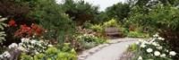 Bench in a garden, Olbrich Botanical Gardens, Madison, Wisconsin, USA Fine-Art Print