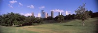 Downtown skylines viewed from a park, Houston, Texas, USA Fine-Art Print