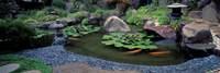 Japanese Garden, University of California, Los Angeles Fine-Art Print