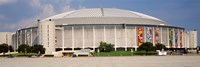 Baseball stadium, Houston Astrodome, Houston, Texas, USA Fine-Art Print