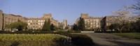 Trees in the lawn of a university, University of Washington, Seattle, King County, Washington State, USA Fine-Art Print
